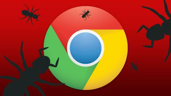 4 extensões para navegador que podem estar colocando sua privacidade em risco