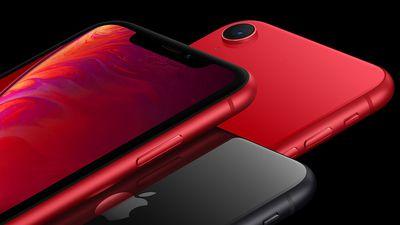 iPhone Xr é homologado pela Anatel e deve começar a ser vendido em breve