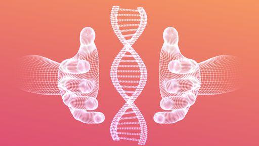 Genoma humano é sequenciado de forma completa pela primeira vez, diz estudo