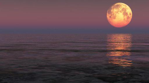 Tá vendo aquela Lua que brilha lá no céu? O que aconteceria se ela sumisse?