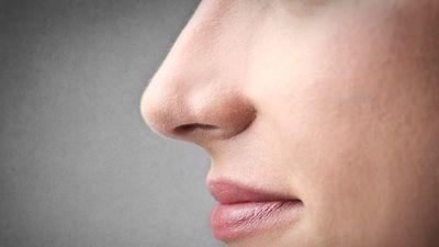 Nariz eletrônico consegue sentir uma variedade de cheiros
