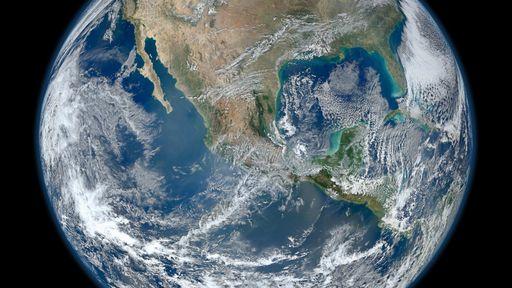 Dia Mundial do Meio Ambiente promove a restauração dos ecossistemas em 2021