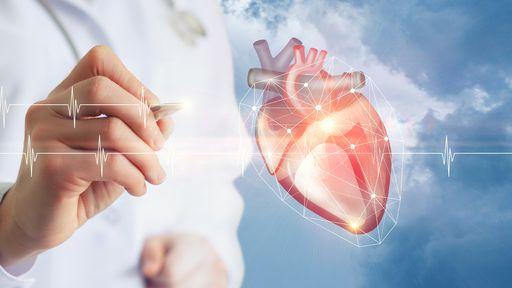 Cientistas transformaram células-tronco em tecido cardíaco — e transplantaram!