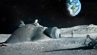 Sonha em viajar para a Lua? Fique de olho no que essas empresas estão planejando