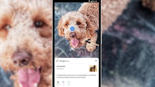 Google Lens chega ao Google Imagens no Brasil com recurso de lupa interativa