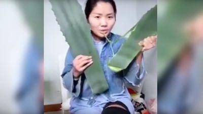 Vlogger de saúde come planta venenosa sem querer em transmissão ao vivo