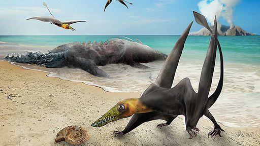 Dragão alado! Novo pterossauro é descoberto no Deserto do Atacama, no Chile