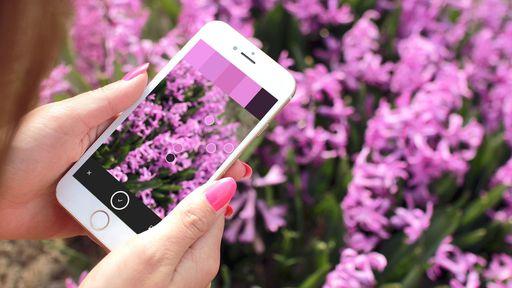 Os 10 melhores apps iOS da semana (10/07/19)