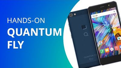 Quantum Fly [Hands-on]