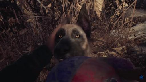 A Bruxa de Blair   Gameplay do jogo mostra interação com companheiro animal