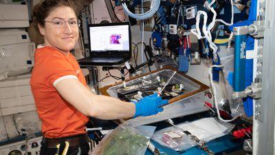 Astronauta Christina Koch quebrará recordes e ficará 328 dias no espaço