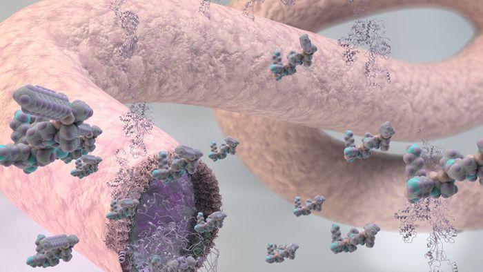 Cientistas estão perto de conseguir produzir veias artificiais