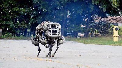 Google está vendendo Boston Dynamics para a Toyota