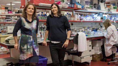 Cientistas descobrem possível cura para fibrose pulmonar