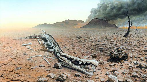 Cientistas identificam extinção em massa que deu origem aos dinossauros