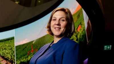 Robyn Denholm é a nova presidente do conselho da Tesla