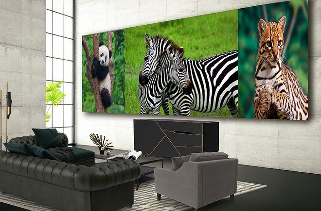 i503207 Vision Art NEWS