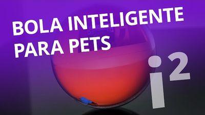 Playdate: a bola inteligente para pets [Inovação ²]