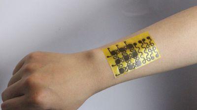 Pele eletrônica equipada com sensores se regenera quando rasgada