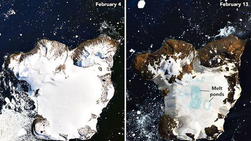 Imagens impressionantes mostram rápido derretimento de gelo na Antártida