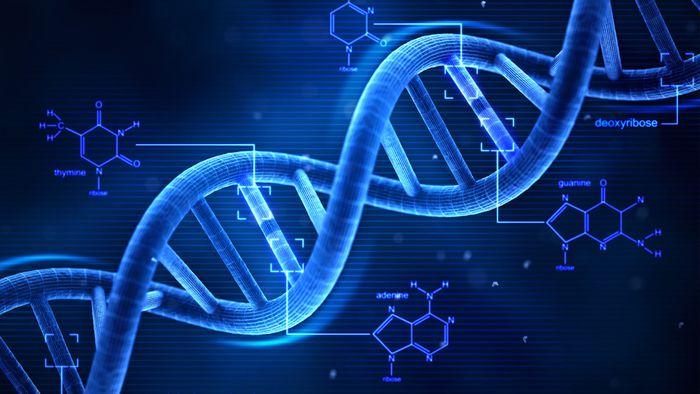 Cientistas criam método para gravar toda informação do mundo em 4 gramas de DNA