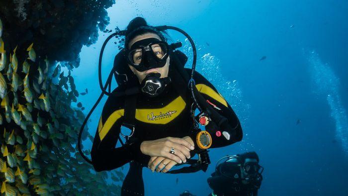 Coração de mergulhadores pode chegar a apenas 11 BPM; entenda o motivo