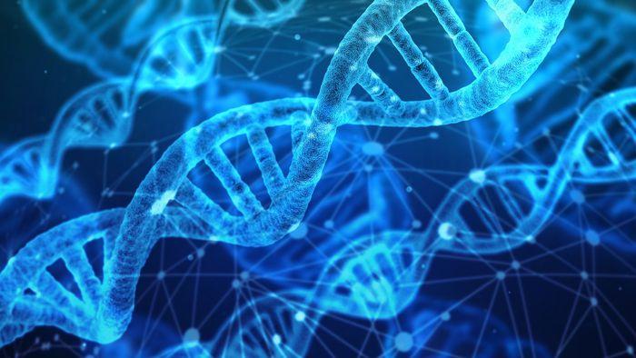 DNA do Brasil | Entenda como o DNA brasileiro pode mudar a medicina de precisão