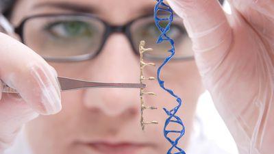 China exige que cientista pare atividade que gerou bebês editadas geneticamente