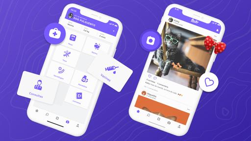 Flockr: app brasileiro quer ser o veterinário de bolso do seu pet