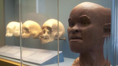 Crânio de Luzia é encontrado entre os escombros do Museu Nacional