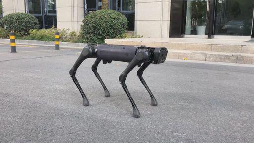 Cão-robô com IA do Facebook aprende sozinho como andar em diferentes ambientes