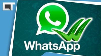 Whatsapp: como evitar que saibam que você esteve online no comunicador [Dicas e