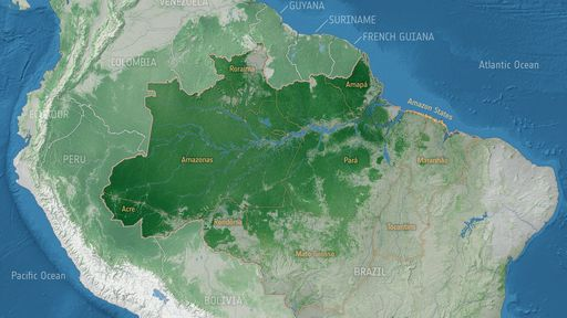Degradação florestal é a principal vilã na perda de carbono da Amazônia, diz ESA