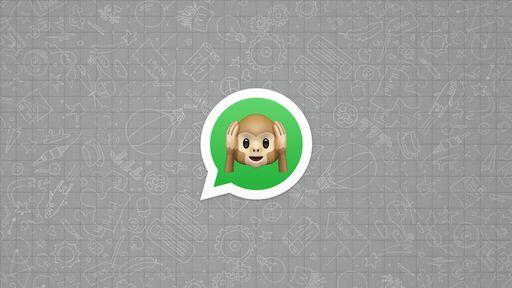 WhatsApp finalmente vai deixar você silenciar uma conversa para sempre