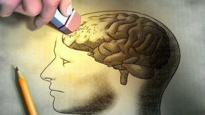 Cientistas já sabem como apagar memórias específicas (mas em lesmas)