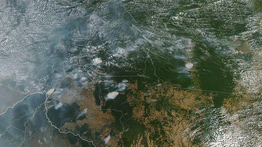 O que é real e o que é fake nas postagens sobre as queimadas amazônicas?
