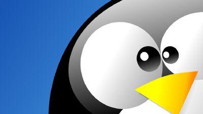 Para ser mais inclusiva, comunidade Linux adota código de conduta
