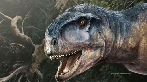 Crânio de dinossauro carnívoro e amedrontador é encontrado na Argentina