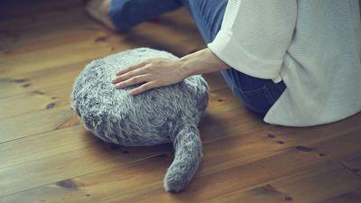 Parece bizarro, mas não é: gato robótico sem cabeça pode ser seu novo pet