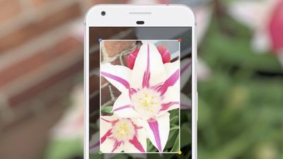 Google Lens já está parcialmente disponível em português para alguns usuários