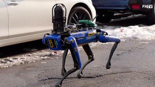 Nova York aposenta cão-robô policial após reações negativas da população