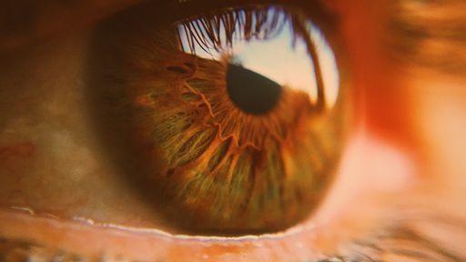 Coronavírus pode infectar até a retina dos olhos, aponta estudo brasileiro