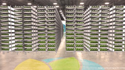 Fazenda vertical promete produção 75 vezes maior do que uma tradicional