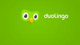Valor da Duolingo sobe para US$ 700 milhões após financiamento