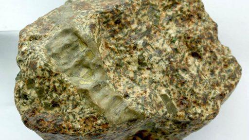 Este meteorito pode ter se originado de um protoplaneta mais antigo que a Terra
