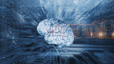 Quando a Inteligência Artificial dá errado
