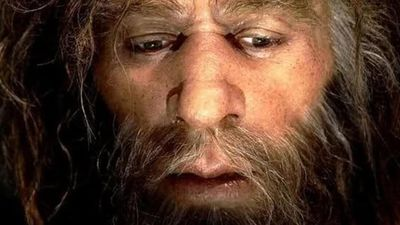 """""""Nova"""" espécie de hominídeo é descoberta por meio de inteligência artificial"""