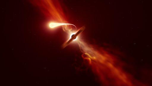 Astrônomos conseguem observar estrela sendo engolida por um buraco negro