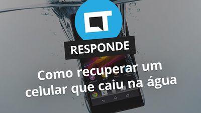 Como recuperar um celular que caiu na água [CT Responde]