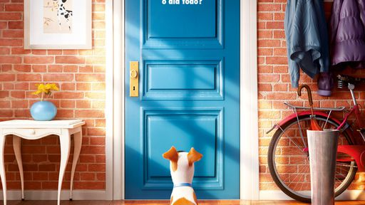 Novos filmes nos cinemas: Pets, Águas Rasas, Nerve e muito mais (25 a 31/08)